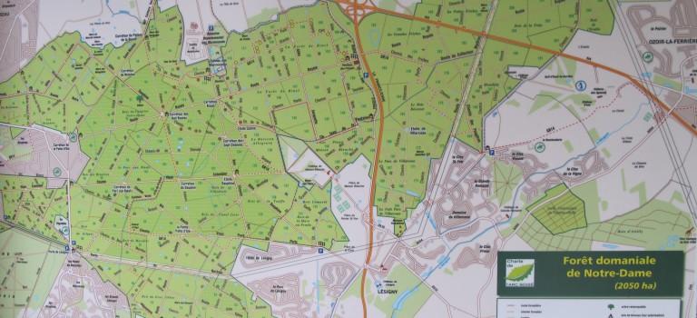 Escapade : week-end en forêt à Notre Dame