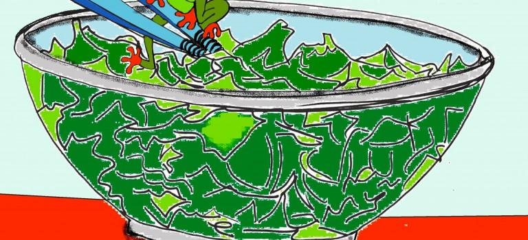 Charenton : une grenouille dans une salade!