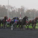 Hippodrome de Vincennes 7 novembre  2011 3