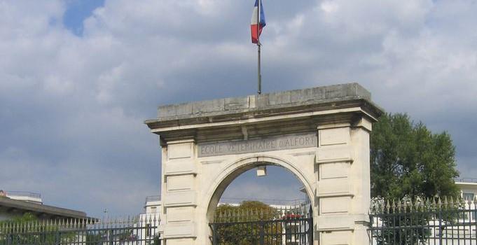 Stéphane Le Foll va créer une mission pour valoriser le patrimoine de l'Ecole nationale vétérinaire