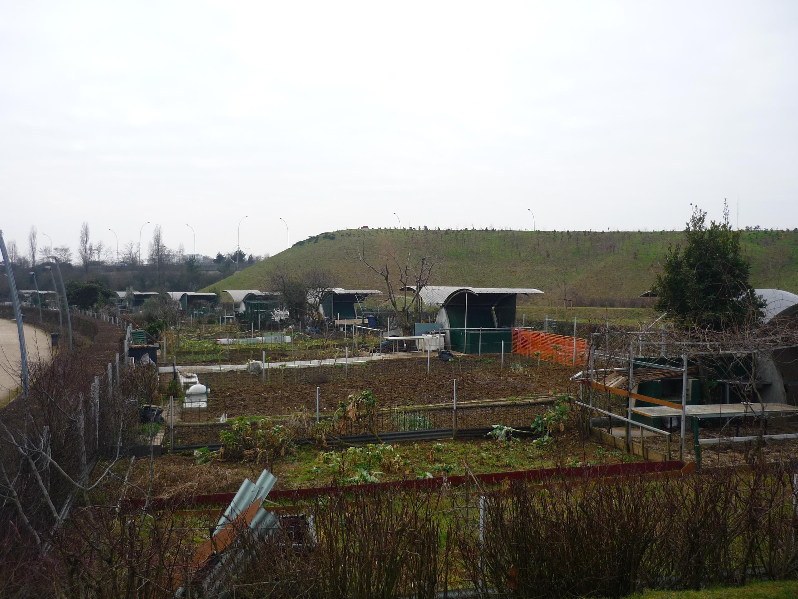 Jardin Ouvrier Le Havre villejuif : le succès des jardins familiaux   94 citoyens