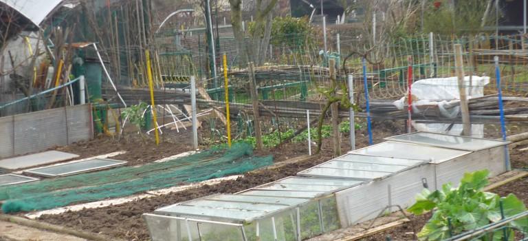 Ateliers jardinage gratuits au parc des Hautes Bruyères