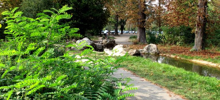 Foulées de Vincennes 2016  : 10 km dans les bois