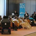 Assises de l'accessibilité Val de Marne Novembre 2012