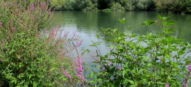 Un projet européen gagné pour développer le tourisme sur la Marne