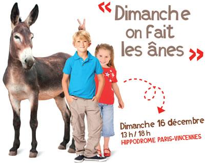 Journée des ânes à l'hippodrome de Vincennes