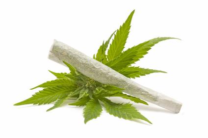 Un go-fast de cannabis stoppé au Perreux sur Marne