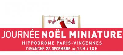 Journée Noël miniature à l'hippodrome de Vincennes