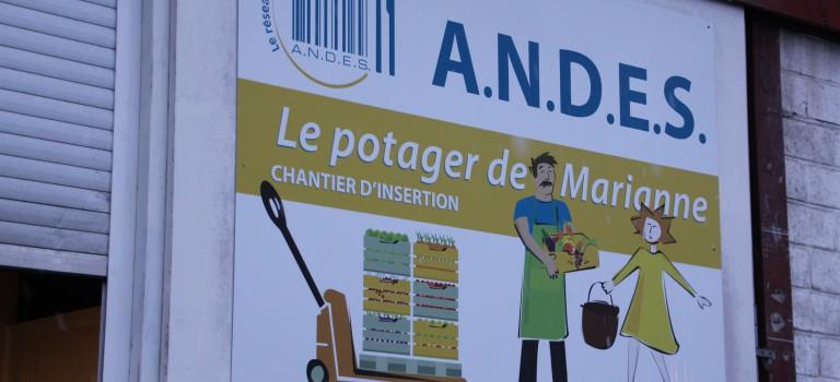 Le potager de Marianne : une passerelle économe vers l'emploi