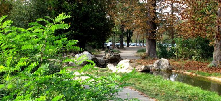 Trois nouvelles stations Vélib au bois de Vincennes
