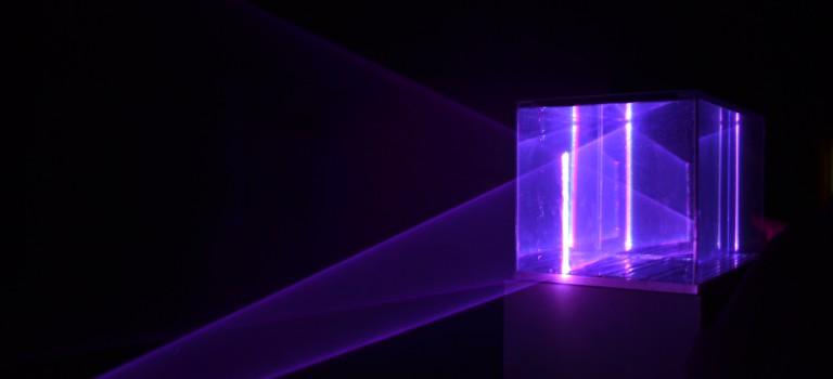 Expo Natures artificielles : quand l'art se mesure aux éléments