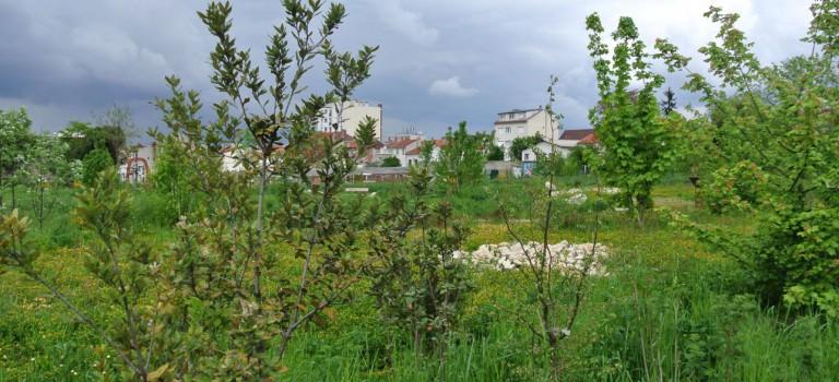 La moitié des villes du Val-de-Marne sont carencées en parcs et jardins publics
