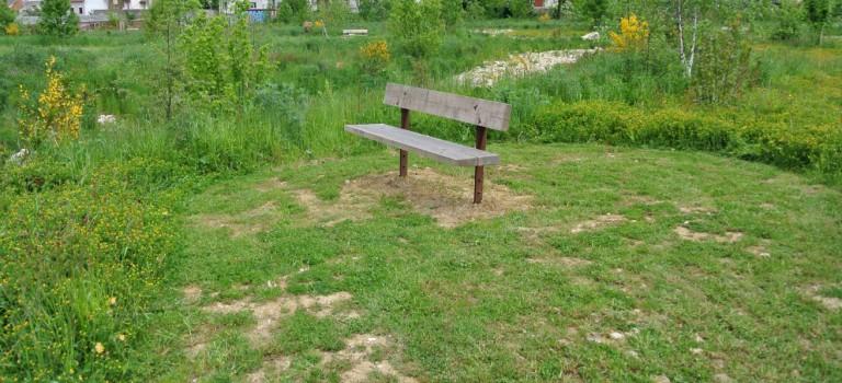 Promenade nature accessible aux personnes handicap es - Office du tourisme fontenay sous bois ...