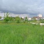 Eco-parc des carrieres fontenay sous bois 8