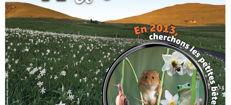 Fête de la nature 2013 : focus sur les petites bêtes