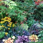 Plantes Jardin Fleurs