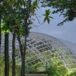 Zoo Vincennes  Vue d'architecte de la Grande Serre © Artefactory - AJOA   BTuA