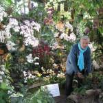 Orchidees Lecoufle Jardin des plantes 1