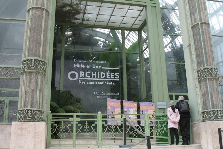 Orchidees Lecoufle Jardin des plantes 2