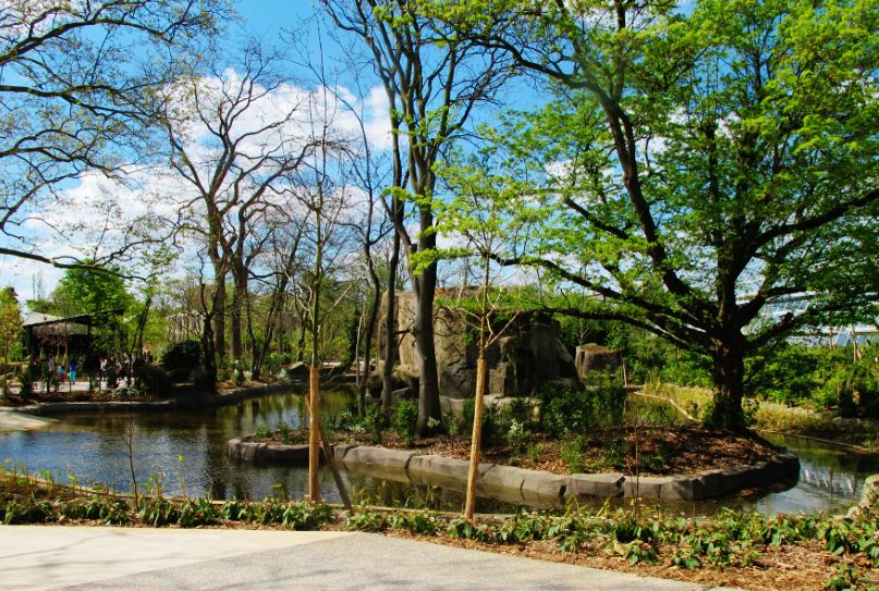 Paysage Zoo2