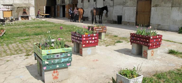 Jardins ouverts: c'est la fête aux légumes ce weekend