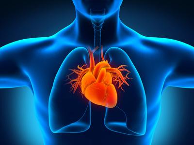La chirurgie cardiaque en pointe à l'hôpital Mondor de Créteil