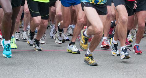 Val'dingo 94: une course d'obstacles pour clôturer les Jeux du Val-de-Marne