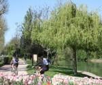 Vélo bord de Marne