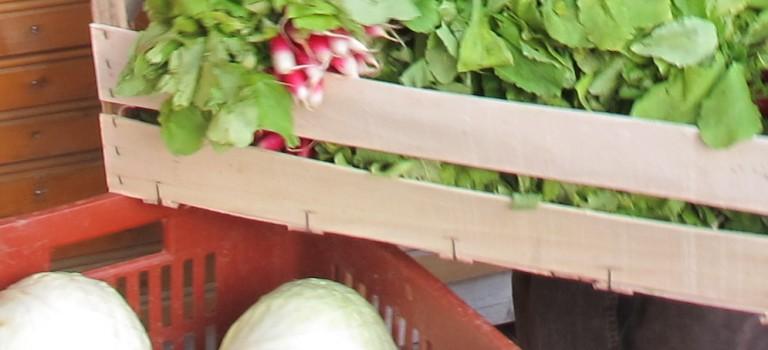 10 ans d'Amap dans la région : du panier bio pour citadin à la révolution agricole