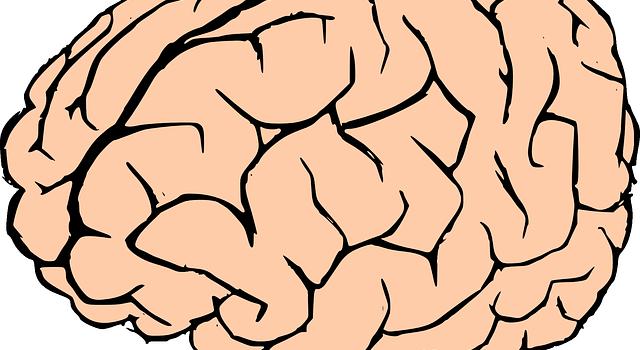 Qu'est-ce que l'intelligence ? Café-philo à Bry