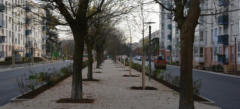 L'allée Ronsard : nouvelle étape de la promenade inter-quartiers à Cachan