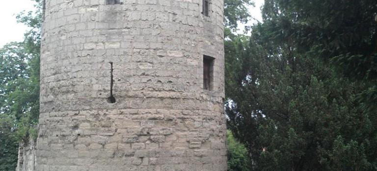 Visite guidée du chantier archéologique de l'Abbaye