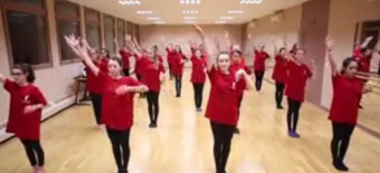 Flashmob pour fêter les 20 ans du Relais santé de Chennevières