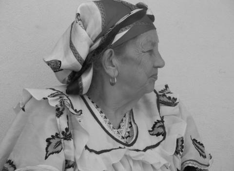 Hommage au Chibanias, ces femmes de l'exil