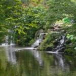 Bois de Vincennes 13.09 (2)