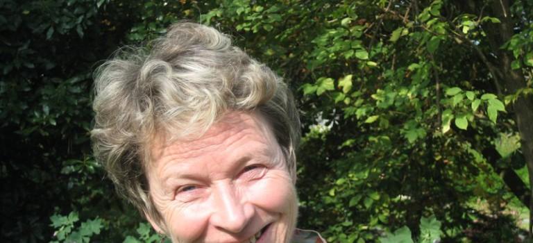 Disparition d'Edith Heslouin à Nogent-sur-Marne