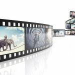 Cinema credit fotolia tiero