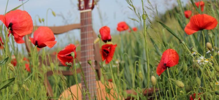 Fête de la musique : scène ouverte à Villecresnes