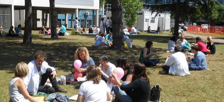 Déjeuner sur l'herbe après l'incident du self à Henri Mondor