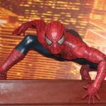 Spiderman wcc Cristian Bortes