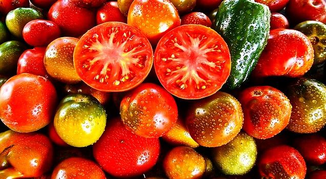 Vente de légumes en direct par les paysans du Modef
