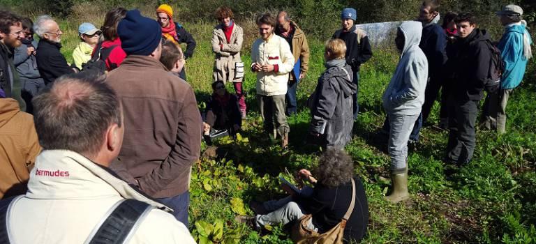 Relocalisons, l'association qui réinvite l'agriculture en ville