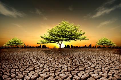 Alimentation et dérèglement climatique : débat sur une péniche
