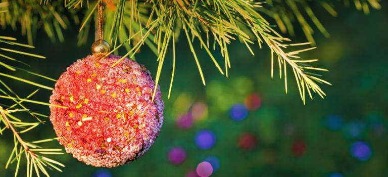 Ce weekend du 2 au 4 décembre en Val-de-Marne