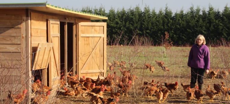 L'agro-alimentaire: un enjeu stratégique pour Grand Paris Sud Est Avenir
