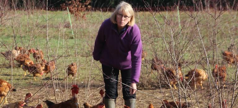 Sophie Besnard, des laboratoires de Sanofi à sa ferme du Plateau briard