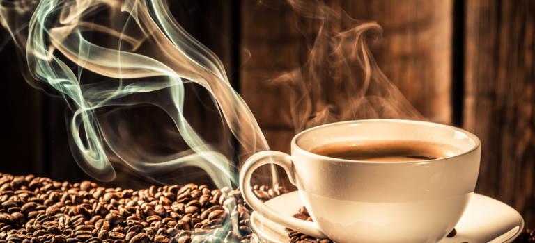 Sucy-en-Brie fête la littérature et le café