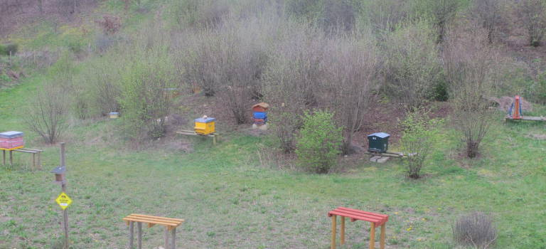 Les Butineurs du Val-de-Bièvre organisent leur deuxième Festival de l'abeille