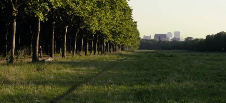 Le merveilleux bois de Vincennes de Claire Simon