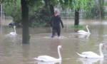 Colloque à Saint-Maur: la Métropole du Grand Paris réfléchit à la prévention des inondations